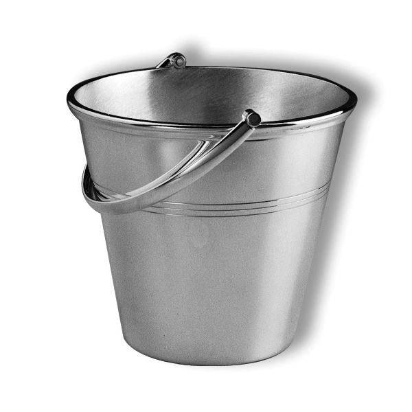 Ice pail with loop handle